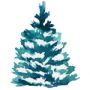 watercolor spruce tree